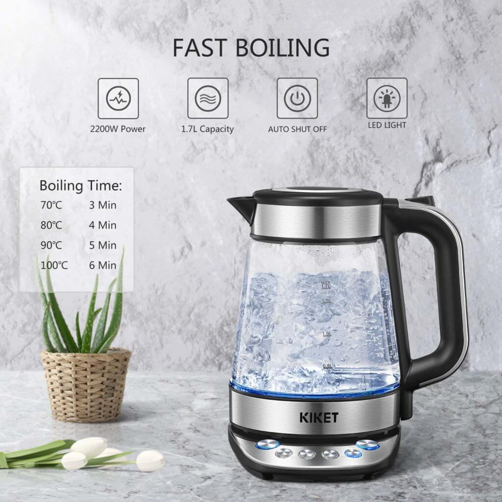 variable temperature electric kettle 2020