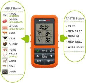 best thermometer for yogurt making